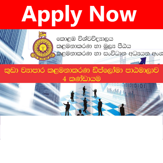 Diploma in Small Business Management  – DSBM