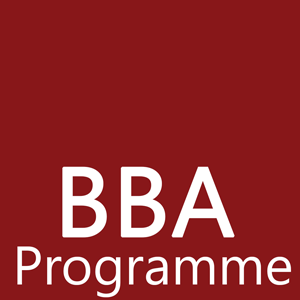BBA (Special) Degree